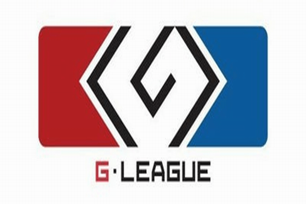 subscriptions_gleague2013_large
